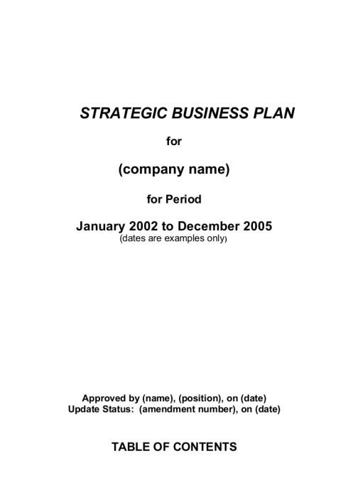 Writing a Business Plan - Do It Yourself or Hire Someone